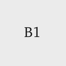 sujecion-b1.jpg